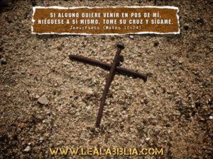 Lea la biblia en un ao lea la biblia este sitio usa akismet para reducir el spam aprende cmo se procesan los datos de tus comentarios urtaz Images