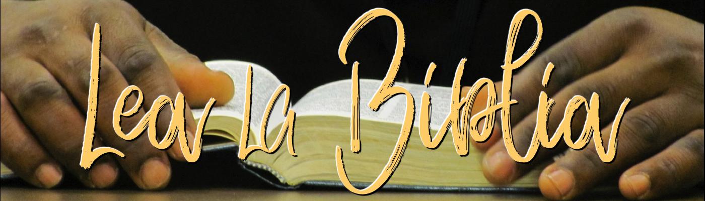 Lea La Biblia En Un Año Lea La Biblia